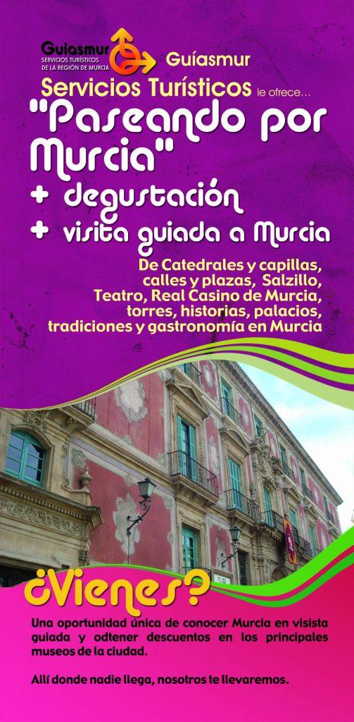 Visita Paseando por Murcia A